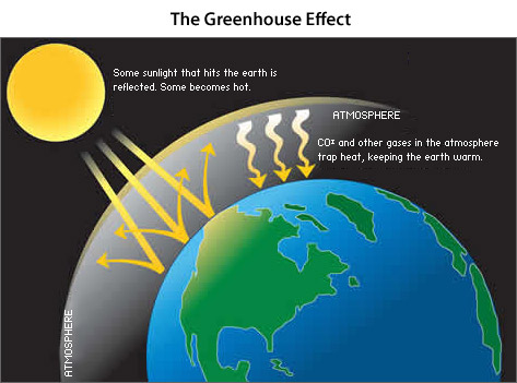 the greenhouse effect the importanceeffects essay